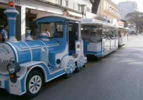 Trenini turistici